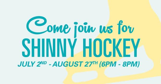 shinny hockey for web.jpg